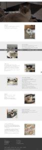 web-screen-ragdollcat-allgemeines
