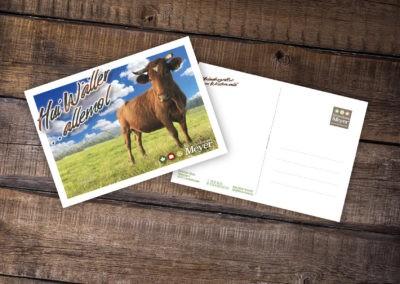 Printdesign Postkarte huiWäller